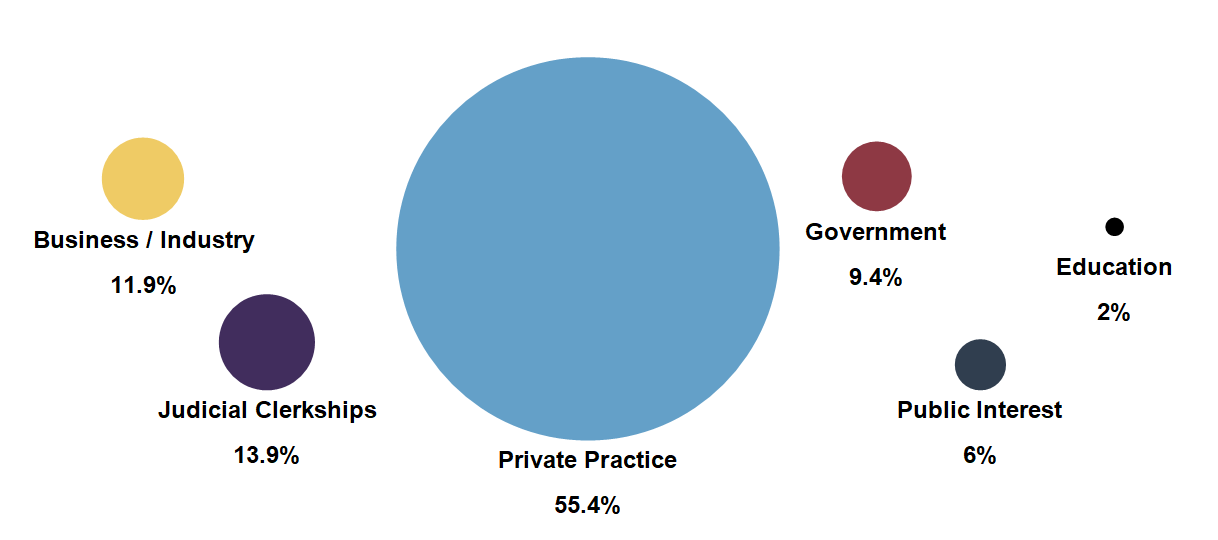Private Practice 55.4% Judicial Clerkships 13.9% Business / Industry 11.9% Government 9.4% Public Interest 6% Education 2%